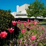 Stadsteatern med full blomning i blomsterrabatten! Foto Studio-e.se